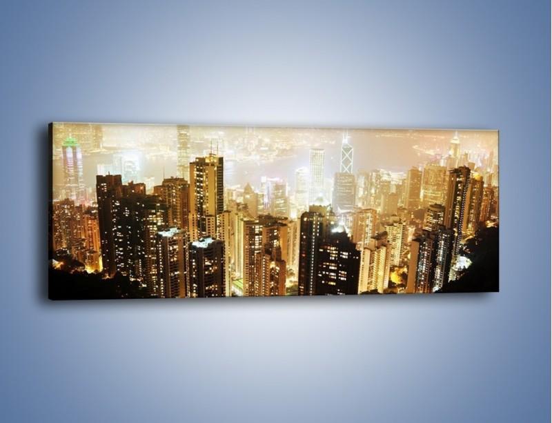 Obraz na płótnie – Miasto widziane z góry – jednoczęściowy panoramiczny AM007