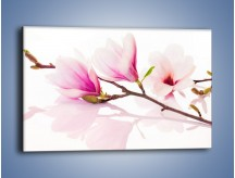 Obraz na płótnie – Lekkość w kwiatach wiśni – jednoczęściowy prostokątny poziomy K485