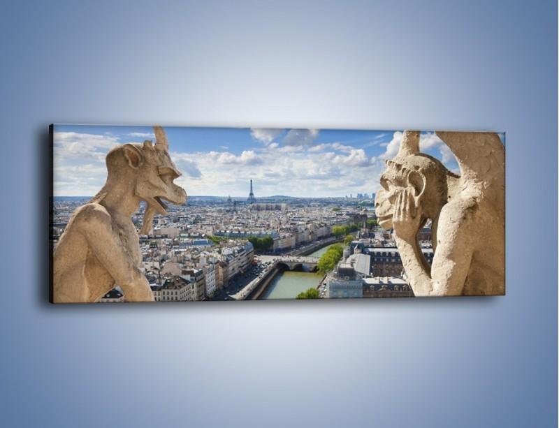 Obraz na płótnie – Kamienne gargulce nad Paryżem – jednoczęściowy panoramiczny AM037