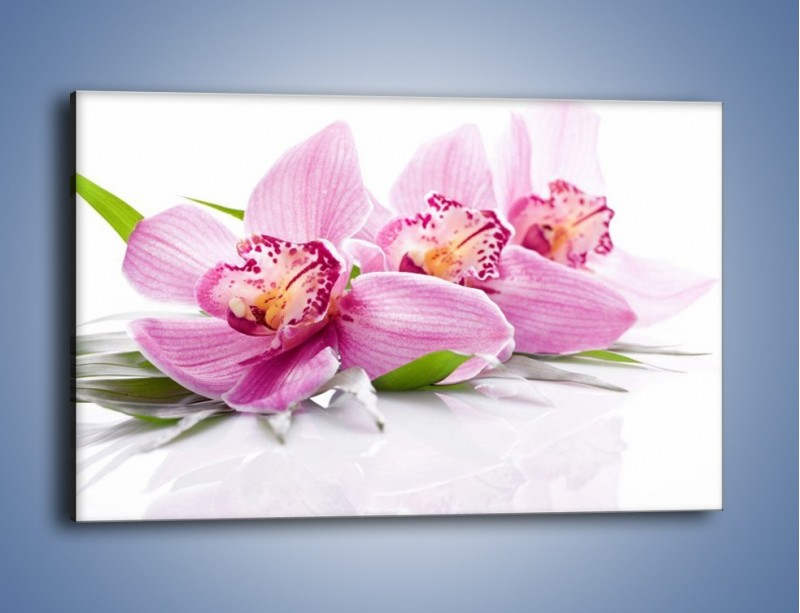 Obraz na płótnie – Biały kwiatowy stół – jednoczęściowy prostokątny poziomy K688