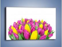 Obraz na płótnie – Bukiet fioletowo-żółtych tulipanów – jednoczęściowy prostokątny poziomy K778