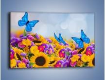 Obraz na płótnie – Bajka o kwiatach i motylach – jednoczęściowy prostokątny poziomy K794