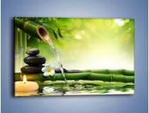 Obraz na płótnie – Bambus i źródło wody – jednoczęściowy prostokątny poziomy K930