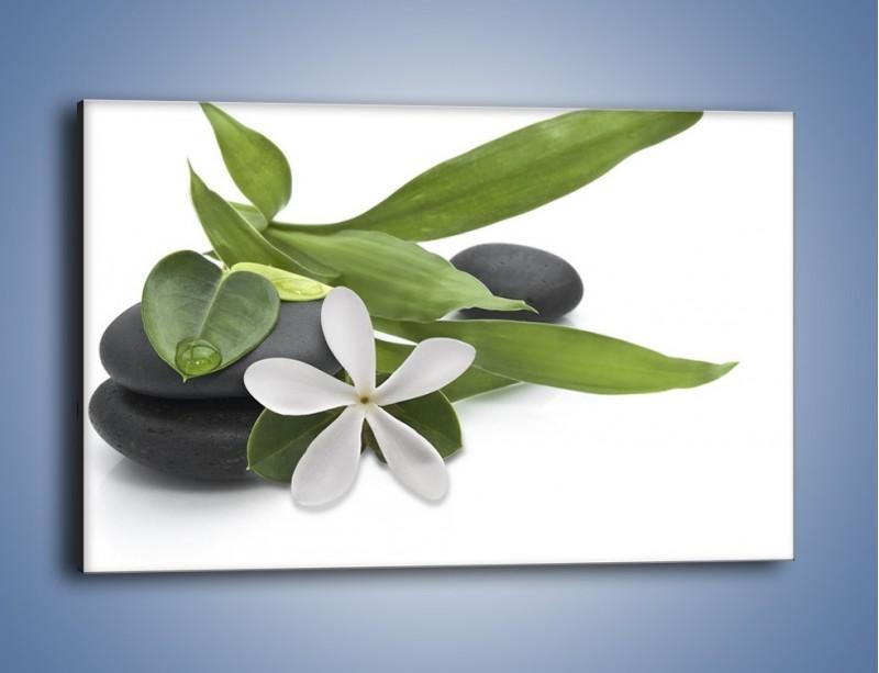 Obraz na płótnie – Artystyczna kompozycja z kwiatem – jednoczęściowy prostokątny poziomy K968