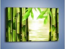 Obraz na płótnie – Bambusowe liście i łodygi – jednoczęściowy prostokątny poziomy KN027