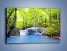 Obraz na płótnie – Mały leśny wodospad – jednoczęściowy prostokątny poziomy KN057