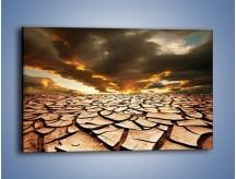 Obraz na płótnie – Ziemia spragniona wody – jednoczęściowy prostokątny poziomy KN078