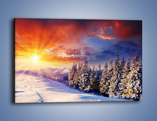 Obraz na płótnie – Urok zimowej pary – jednoczęściowy prostokątny poziomy KN098