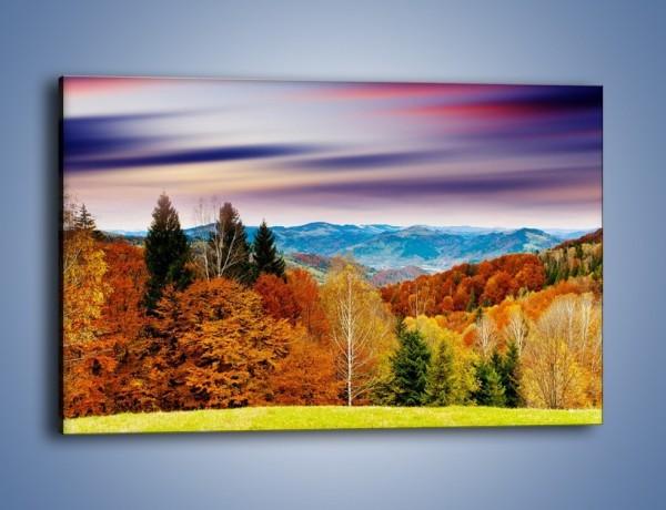 Obraz na płótnie – Drzewa w kolorach jesieni – jednoczęściowy prostokątny poziomy KN099
