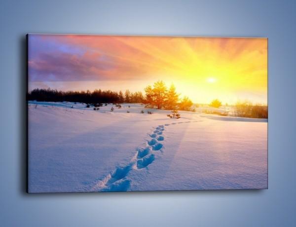 Obraz na płótnie – Ślady na śnieżnym puchu – jednoczęściowy prostokątny poziomy KN1015