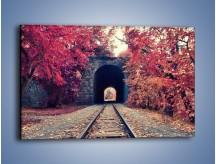 Obraz na płótnie – Pociągiem przez jesień – jednoczęściowy prostokątny poziomy KN1023