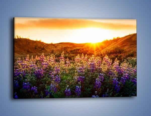 Obraz na płótnie – Kwiaty na pierwszym planie – jednoczęściowy prostokątny poziomy KN1035