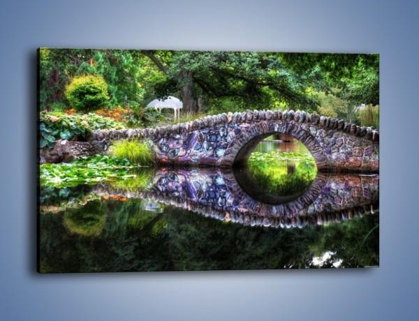 Obraz na płótnie – Wodne oko wśród roślin – jednoczęściowy prostokątny poziomy KN1036