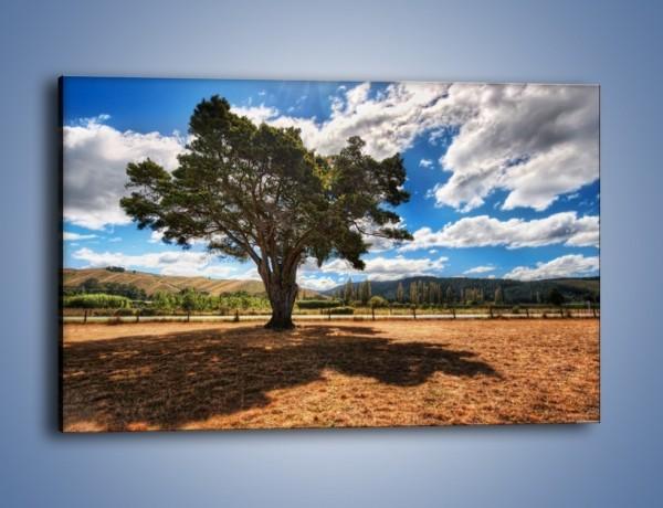Obraz na płótnie – Cień pod rozłożystym drzewem – jednoczęściowy prostokątny poziomy KN1037
