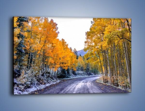 Obraz na płótnie – Pomarańcz w śniegu – jednoczęściowy prostokątny poziomy KN1048