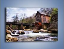 Obraz na płótnie – Stary dom w lesie – jednoczęściowy prostokątny poziomy KN1051