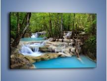 Obraz na płótnie – Wodny leśny świat – jednoczęściowy prostokątny poziomy KN1057