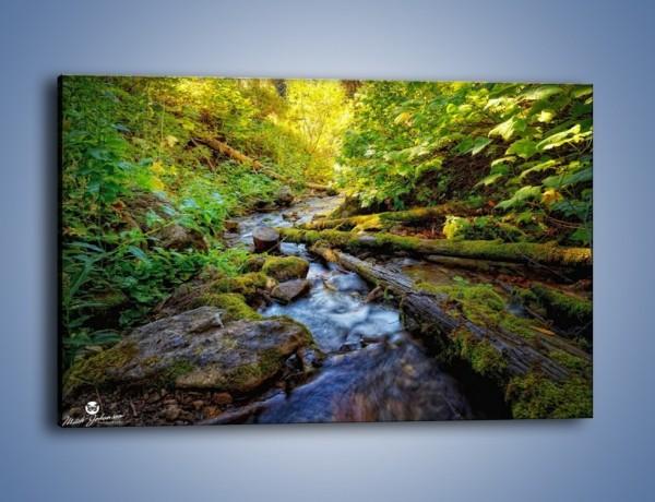Obraz na płótnie – Drewno ścięte do wody – jednoczęściowy prostokątny poziomy KN1059