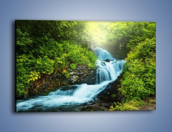 Obraz na płótnie – Spływ wodny i zieleń – jednoczęściowy prostokątny poziomy KN1069