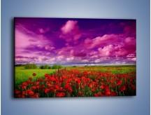 Obraz na płótnie – Maki nad fioletowymi chmurami – jednoczęściowy prostokątny poziomy KN1079A
