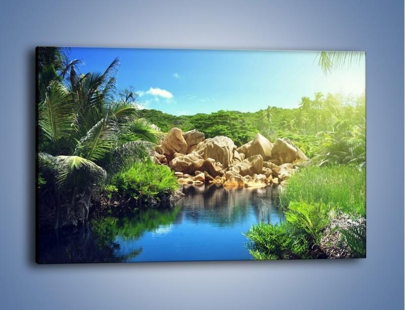 Obraz na płótnie – Bogata roślinność nad wodą – jednoczęściowy prostokątny poziomy KN1082A