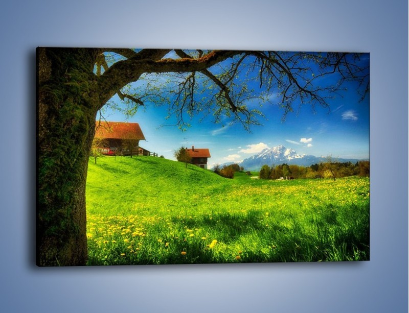 Obraz na płótnie – Chatki na polanie – jednoczęściowy prostokątny poziomy KN1085A