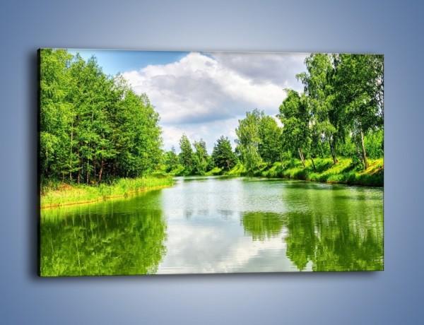 Obraz na płótnie – Spokojna woda i las – jednoczęściowy prostokątny poziomy KN1086