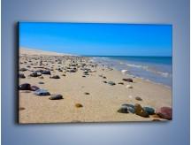 Obraz na płótnie – Całe morze kamyczków – jednoczęściowy prostokątny poziomy KN1086A