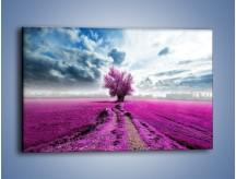 Obraz na płótnie – Lawendowe drzewo – jednoczęściowy prostokątny poziomy KN1093