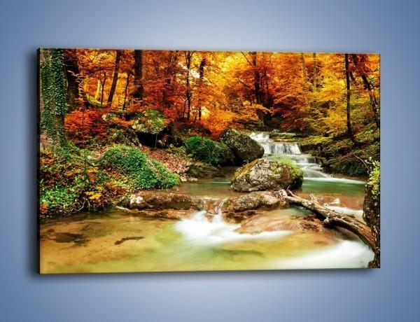 Obraz na płótnie – Jesienne kolory w lesie – jednoczęściowy prostokątny poziomy KN1094A