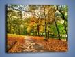 Obraz na płótnie – Piękna jesień w parku – jednoczęściowy prostokątny poziomy KN1098A