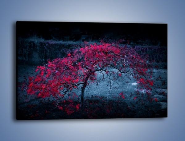 Obraz na płótnie – Czerwone płaczące drzewo – jednoczęściowy prostokątny poziomy KN1101A
