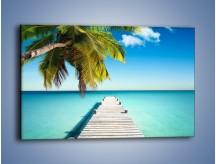 Obraz na płótnie – Pomost wprost do raju – jednoczęściowy prostokątny poziomy KN1109A