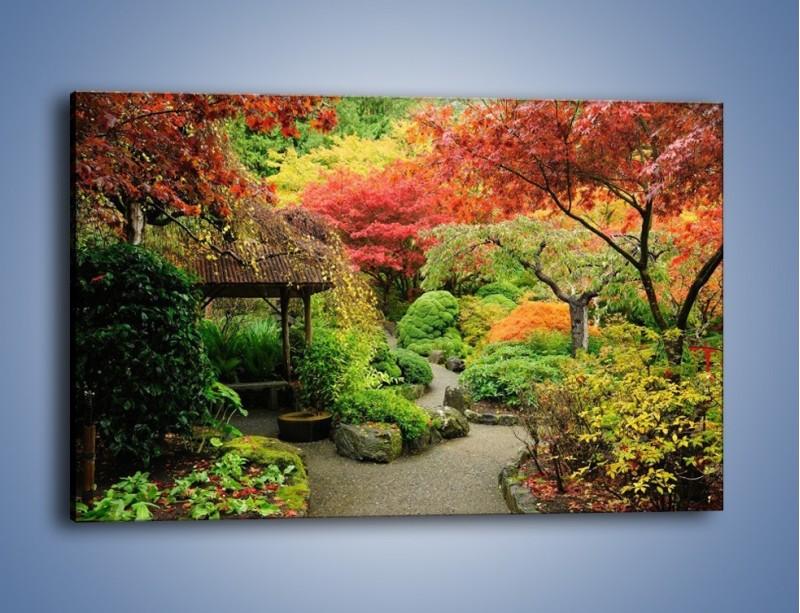 Obraz na płótnie – Alejka między kolorowymi drzewami – jednoczęściowy prostokątny poziomy KN1113