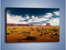 Obraz na płótnie – Kępy trawy na suchym piasku – jednoczęściowy prostokątny poziomy KN1132A