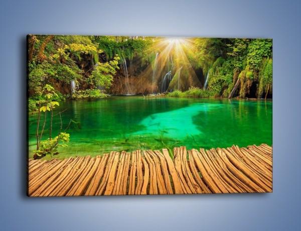 Obraz na płótnie – Zielone oczko wodne i drewno – jednoczęściowy prostokątny poziomy KN1149A