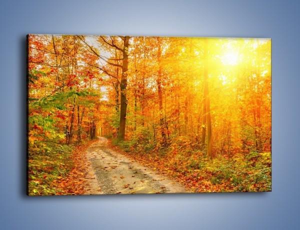 Obraz na płótnie – Leśną drużką jesienią – jednoczęściowy prostokątny poziomy KN1163A