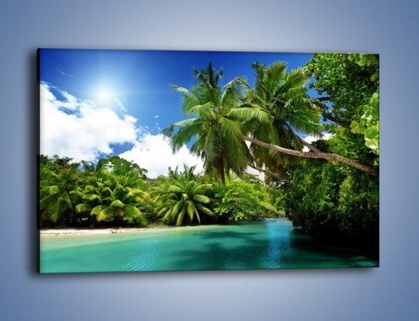 Obraz na płótnie – Rozłożone palmy i woda – jednoczęściowy prostokątny poziomy KN1168A