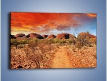 Obraz na płótnie – Czerwona ziemia jak w afryce – jednoczęściowy prostokątny poziomy KN1169A