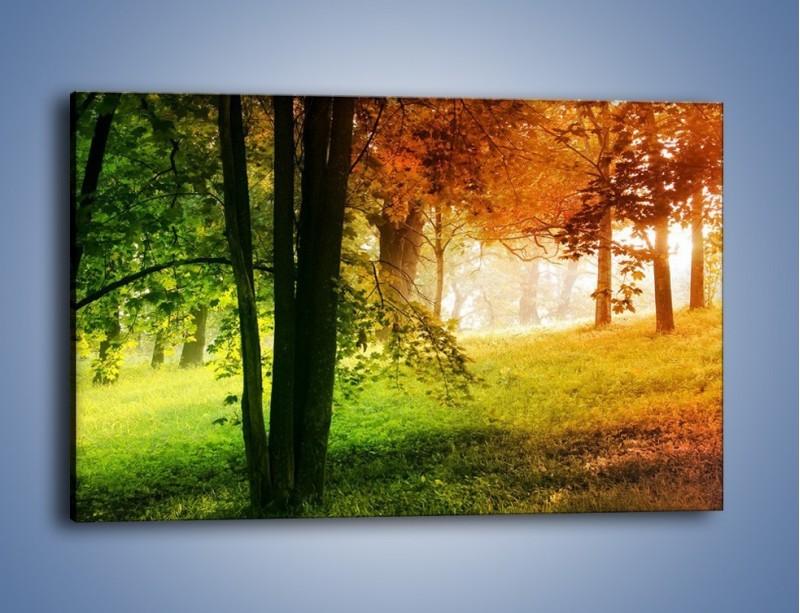 Obraz na płótnie – Trochę wiosny i jesieni – jednoczęściowy prostokątny poziomy KN1181A