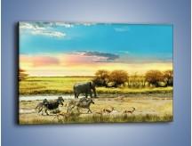 Obraz na płótnie – Zwierzęcy spacer po sawannie – jednoczęściowy prostokątny poziomy KN122