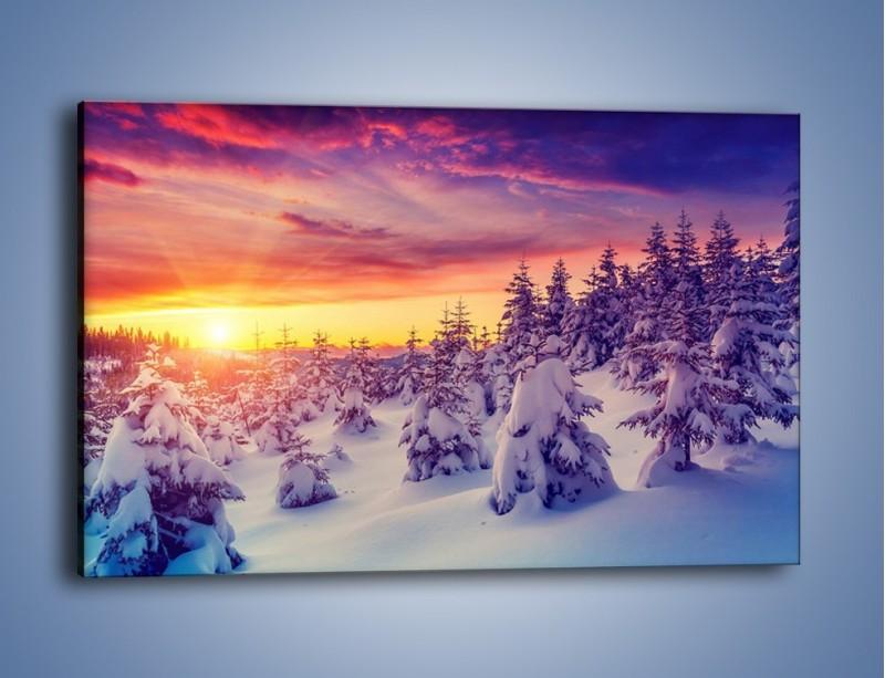 Obraz na płótnie – Choinki w śnieżnej szacie – jednoczęściowy prostokątny poziomy KN1220A