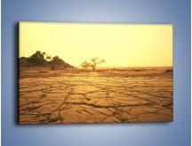 Obraz na płótnie – Ziemia zorana słońcem – jednoczęściowy prostokątny poziomy KN1221A