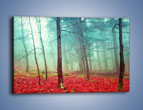 Obraz na płótnie – Drzewka na czerwonym dywanie – jednoczęściowy prostokątny poziomy KN1222A