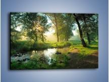 Obraz na płótnie – Mokradła w pięknej zieleni – jednoczęściowy prostokątny poziomy KN1224A