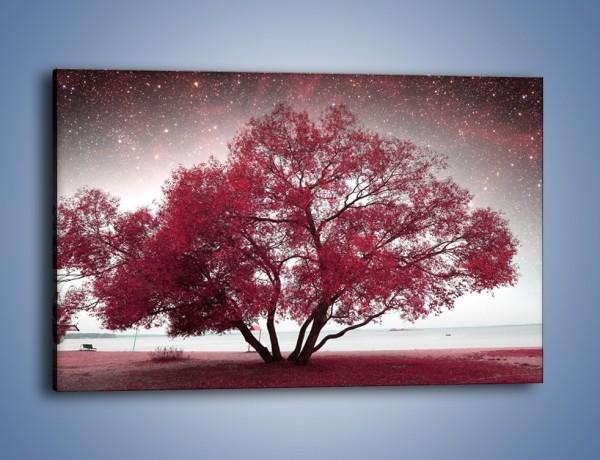 Obraz na płótnie – Drzewo i migające gwiazdy – jednoczęściowy prostokątny poziomy KN1236A