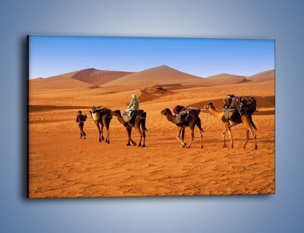 Obraz na płótnie – Idą wielbłądy przez pustynię – jednoczęściowy prostokątny poziomy KN1237A