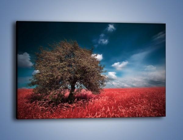 Obraz na płótnie – Drzewo na czerwonej łące – jednoczęściowy prostokątny poziomy KN1246A