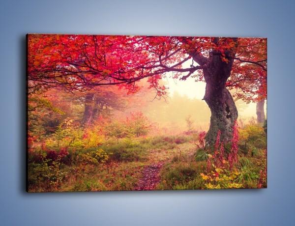 Obraz na płótnie – Kolorowa dzika łąka – jednoczęściowy prostokątny poziomy KN1268A