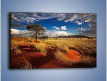 Obraz na płótnie – Czerwony piasek i roślinność – jednoczęściowy prostokątny poziomy KN1290A
